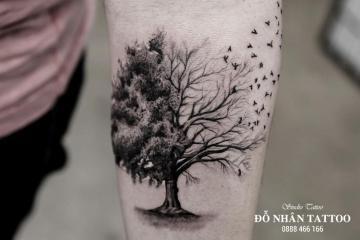 Ý nghĩa hình xăm cây khô