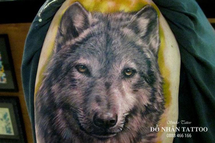 Ý nghĩa hình xăm chó sói