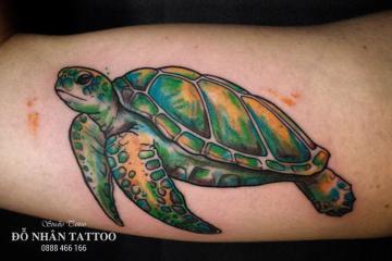 Ý nghĩa hình xăm con rùa