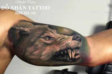 Top 50 hình xăm chó sói đẹp nhất