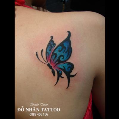 hình xăm bướm 3d 8