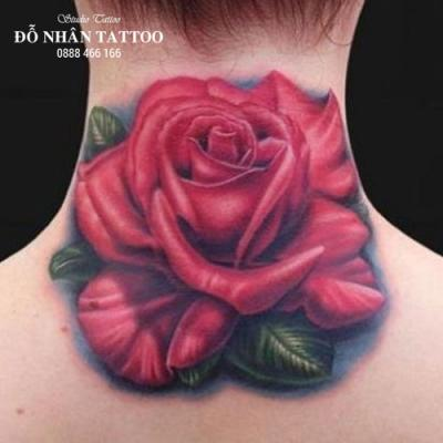 Hình xăm hoa hồng 204