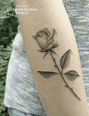 Hình xăm hoa hồng 211