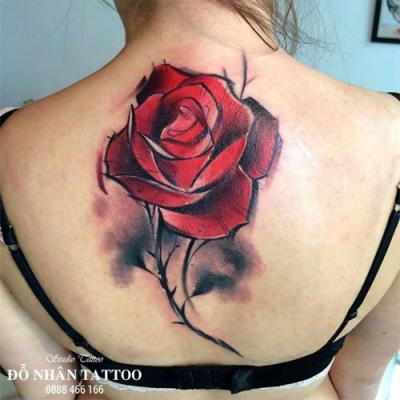 Hình xăm hoa hồng 218