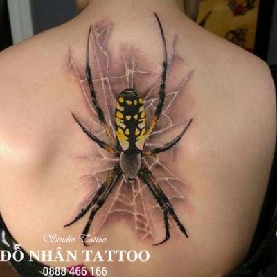 Hình xăm nhện 224