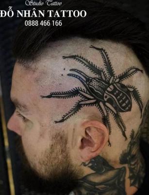 Hình xăm nhện 246