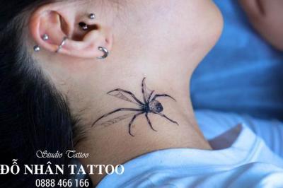 Hình xăm nhện 269