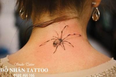 Hình xăm nhện 300