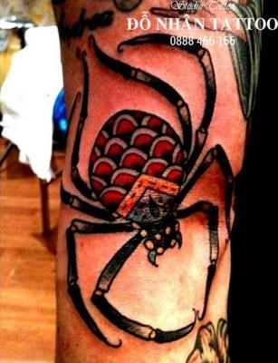 Hình xăm nhện 319
